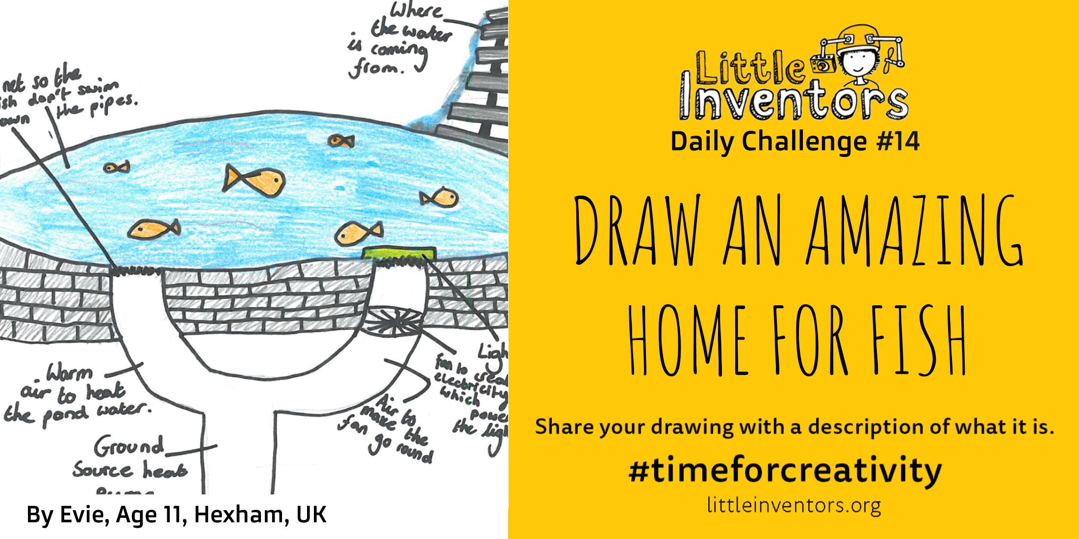 Daily challenge Little Inventors Challenge 14: Draw an amazing home for a fish