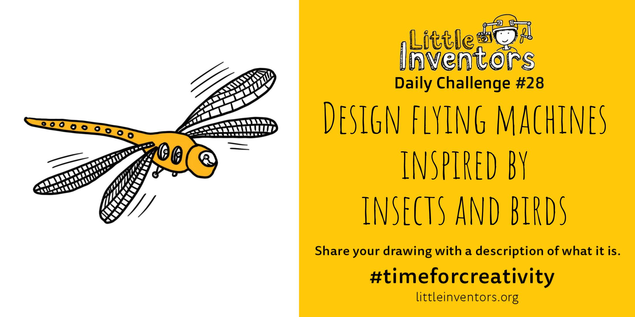 Little Inventors Challenge 28 : Design flying machines inspired by insects and birds